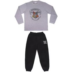 Odjeća Pidžame i spavaćice Harry Potter 2200006498 Gris