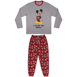 Odjeća Pidžame i spavaćice Disney 2200006207 Gris