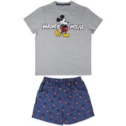 Odjeća Muškarci  Pidžame i spavaćice Disney 2200004974 Gris