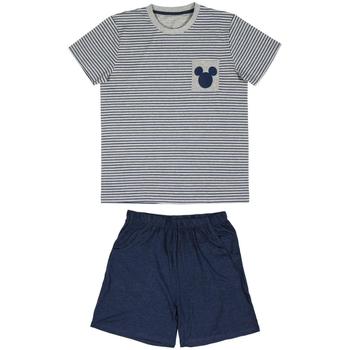 Odjeća Muškarci  Pidžame i spavaćice Disney 2200005280 Gris