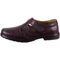 Obuća Muškarci  Derby cipele Josef Seibel Alastair 08 Smeđa