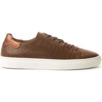 Obuća Žene  Derby cipele Montevita 71813 LEATHER