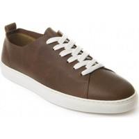Obuća Muškarci  Derby cipele Montevita 71857 BROWN