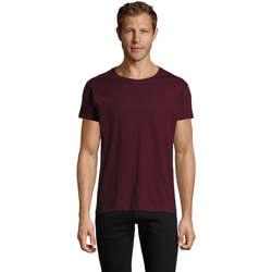 Odjeća Muškarci  Majice kratkih rukava Sols REGENT FIT CAMISETA MANGA CORTA Burdeo