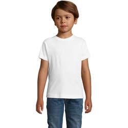 Odjeća Dječak  Majice kratkih rukava Sols REGENT FIT CAMISETA MANGA CORTA Blanco