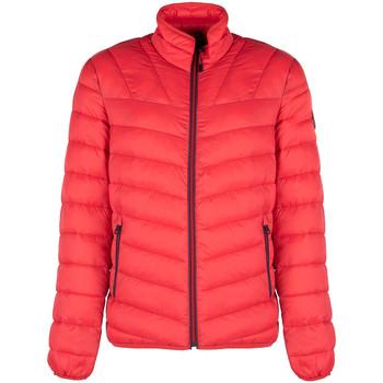 Odjeća Muškarci  Pernate jakne Napapijri  Red