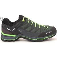 Obuća Muškarci  Pješaćenje i planinarenje Salewa MS Mtn Trainer Lite Gtx Zelena