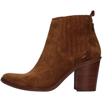 Obuća Žene  Gležnjače Dakota Boots DKT24 BROWN