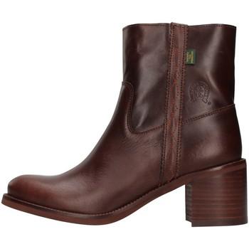 Obuća Žene  Gležnjače Dakota Boots C12 BROWN