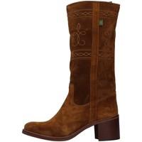 Obuća Žene  Čizme za grad Dakota Boots C5 BROWN