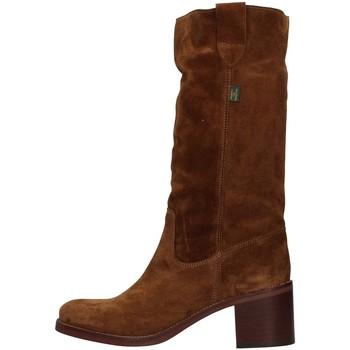 Obuća Žene  Čizme za grad Dakota Boots C1 BROWN