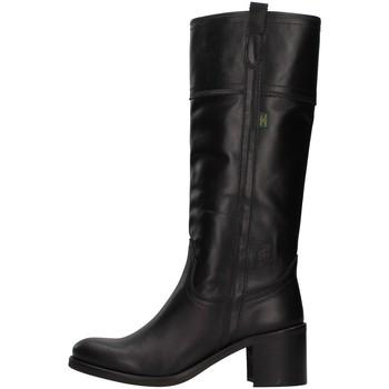 Obuća Žene  Čizme za grad Dakota Boots C11 BLACK