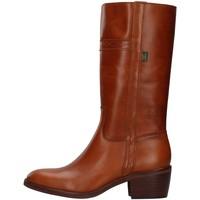 Obuća Žene  Gležnjače Dakota Boots 476 BROWN