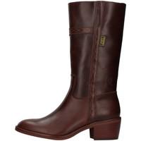 Obuća Žene  Čizme za grad Dakota Boots 476 BROWN