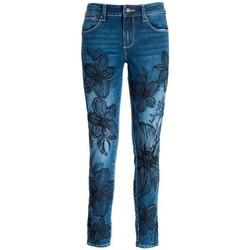 Odjeća Žene  Slim traperice Fracomina FQ21WV1002D40901 Bezbojna