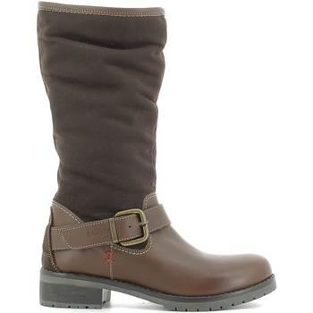 Obuća Žene  Čizme za snijeg Wrangler WL162542 Smeđa