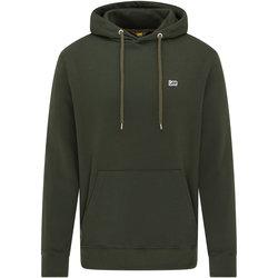 Odjeća Muškarci  Sportske majice Lee Sweatshirt  Serpico vert olive