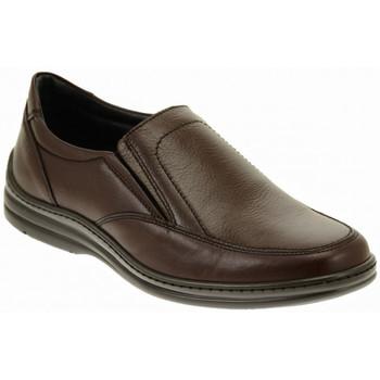 Obuća Muškarci  Derby cipele Fontana  Multicolour