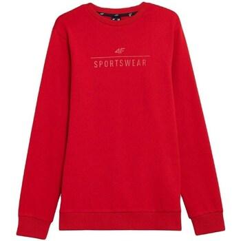 Odjeća Muškarci  Sportske majice 4F BLM350 Red