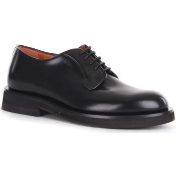 Obuća Muškarci  Derby cipele Santoni MCCN17774JW2IPWEN01 Black