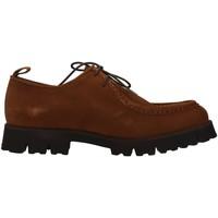 Obuća Muškarci  Derby cipele Dasthon 1301 BROWN