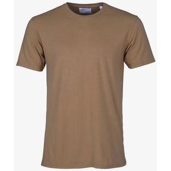 Odjeća Majice kratkih rukava Colorful Standard T-shirt  Sahara Camel marron