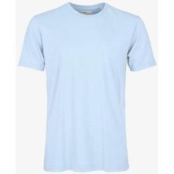 Odjeća Majice kratkih rukava Colorful Standard T-shirt  Polar Blue bleu pâle