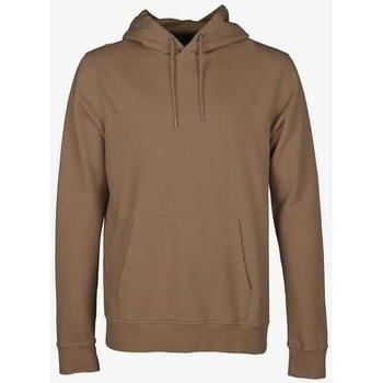 Odjeća Sportske majice Colorful Standard Sweatshirt à capuche  Sahara Camel marron clair