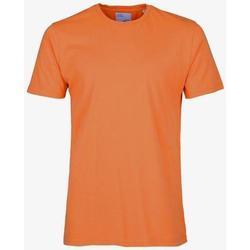 Odjeća Majice kratkih rukava Colorful Standard T-shirt  Burned Orange orange