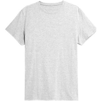 Odjeća Muškarci  Majice kratkih rukava 4F TSM352 Siva