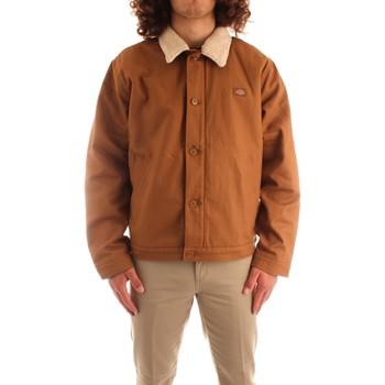 Odjeća Muškarci  Kratke jakne Dickies DK0A4XFYBD01 BROWN