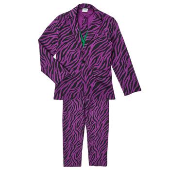 Odjeća Dječak  Kostimi Fun Costumes COSTUME ADOLESCENT LE MECHANT Multicolour