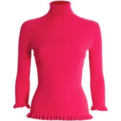 Odjeća Žene  Puloveri Fracomina FR21WT7011K41401 Ružičasta