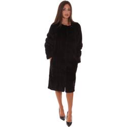 Odjeća Žene  Jakne Fracomina F321WC4001O41201 Crno