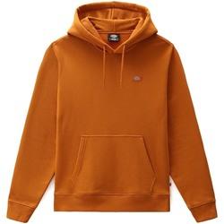 Odjeća Muškarci  Sportske majice Dickies DK0A4XCDB831 Naranča