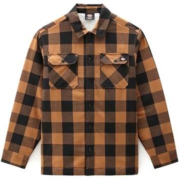 Odjeća Muškarci  Košulje dugih rukava Dickies DK0A4XGRBD01 Smeđa