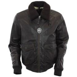 Odjeća Muškarci  Jakne Blauer BLUL01285370 Smeđa