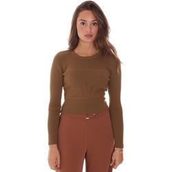 Odjeća Žene  Puloveri Fracomina F321WT7017K48201 Smeđa