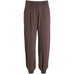 Odjeća Žene  Lagane hlače / Šalvare Fracomina F321WV4002W45901 Smeđa