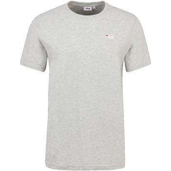 Odjeća Muškarci  Majice kratkih rukava Fila 689111 Siva