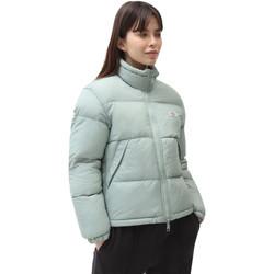 Odjeća Žene  Pernate jakne Dickies DK0A4XP3B871 Zelena
