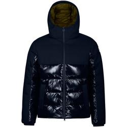 Odjeća Muškarci  Pernate jakne Invicta 4431841/U Plava