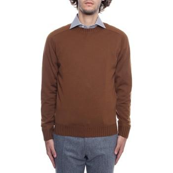 Odjeća Muškarci  Puloveri Fioroni MK00DDQA2 Brown