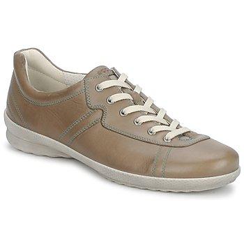 Obuća Žene  Derby cipele Ecco HILL LIGHT LACE Oyster / Rock