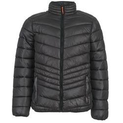 Odjeća Muškarci  Pernate jakne Yurban DALE Crna