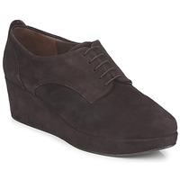 Obuća Žene  Derby cipele Coclico PEARL Smeđa