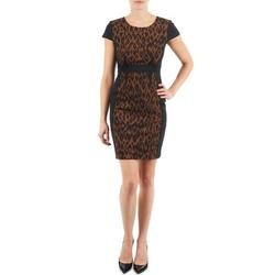 Odjeća Žene  Kratke haljine Manoukian EMMA Crna