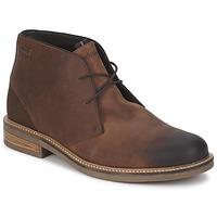 Obuća Muškarci  Niske cipele Barbour READHEAD Smeđa