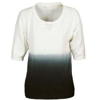 Odjeća Žene  Puloveri Chipie ALCAR Krem boja