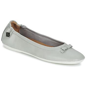 Obuća Žene  Balerinke i Mary Jane cipele PLDM by Palladium LOVELL CASH Siva